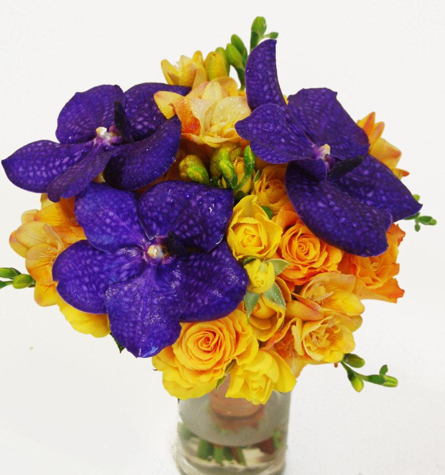 Pruudikimp-vanda-orhidee